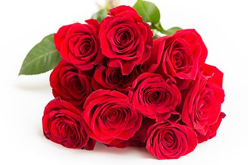 バラ、花束