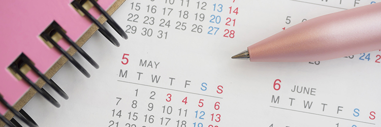 カレンダー,鉛筆